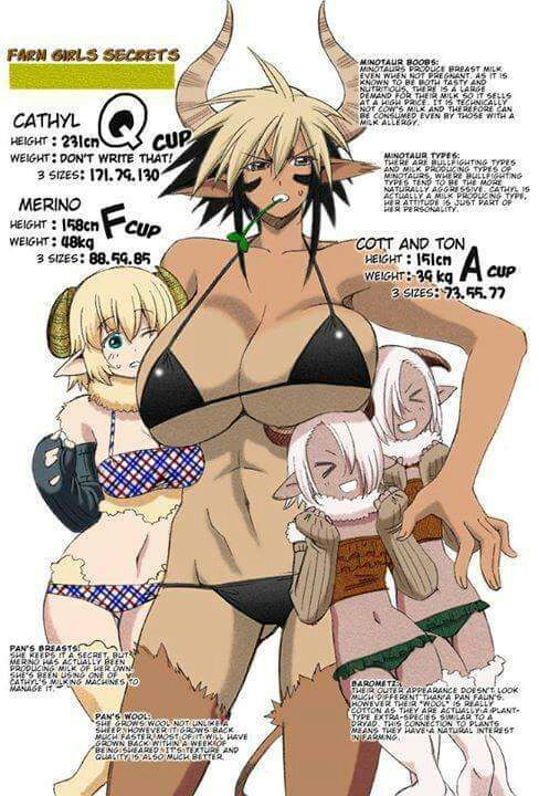 Flat Chested Dragonewt Monster Musume Daily Life With
