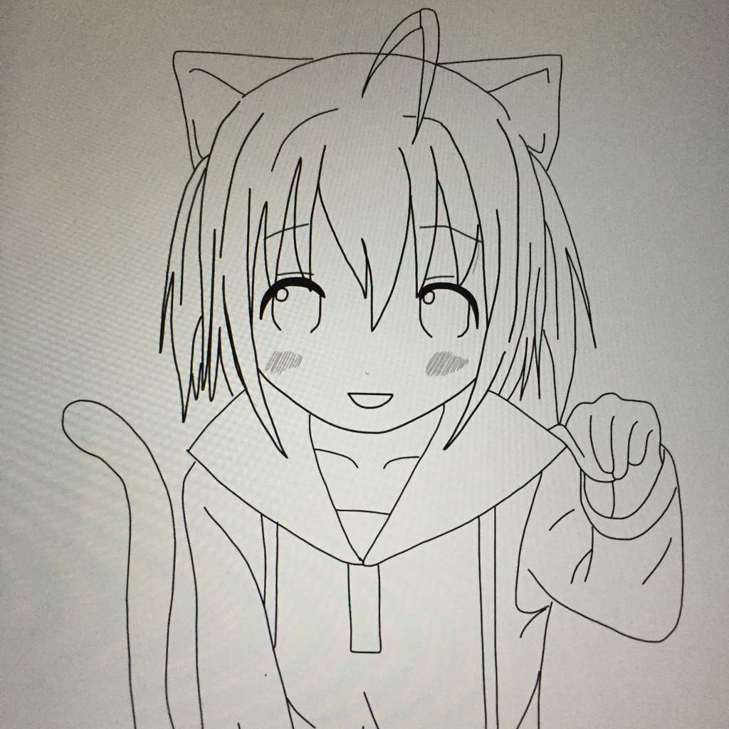 Neko Girl Drawing