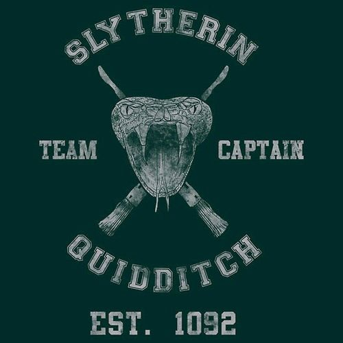 Durmstrang Quidditch Team Harry Potter Amino Can i be a tea. durmstrang quidditch team harry