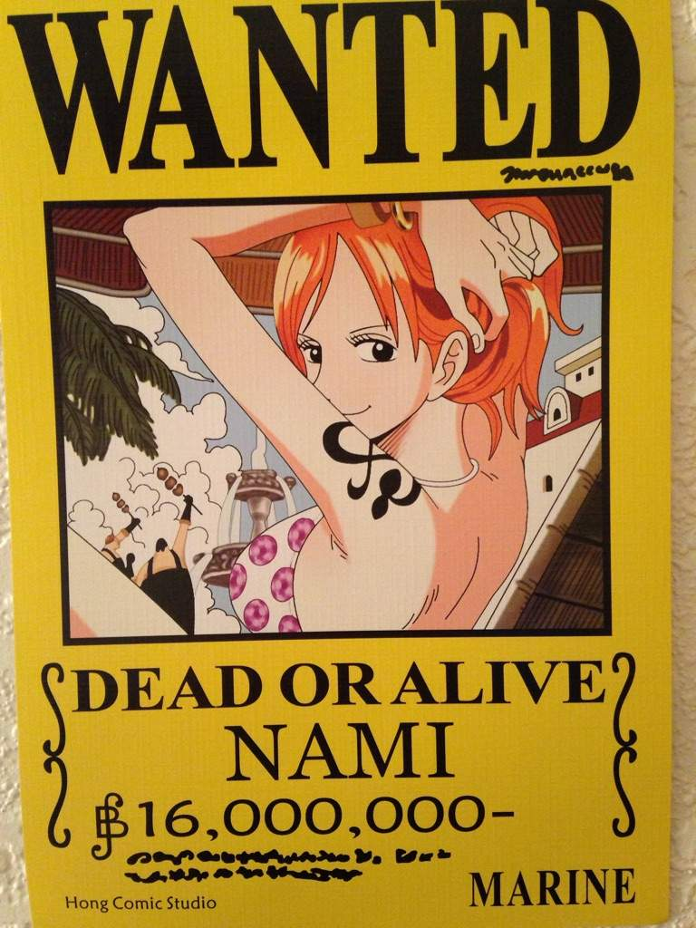 One Piece Wanted Posters! | Anime Amino