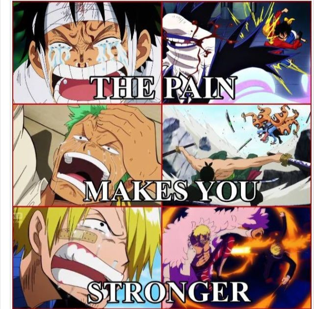 One Piece Quotes | Random One Piece Quotes Anime Amino