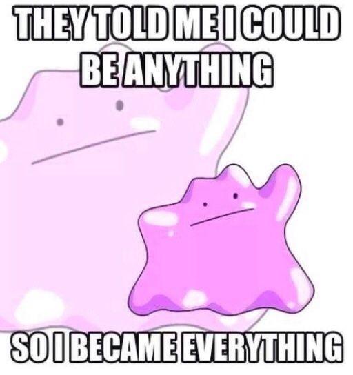 Ditto Meme Pokémon Amino