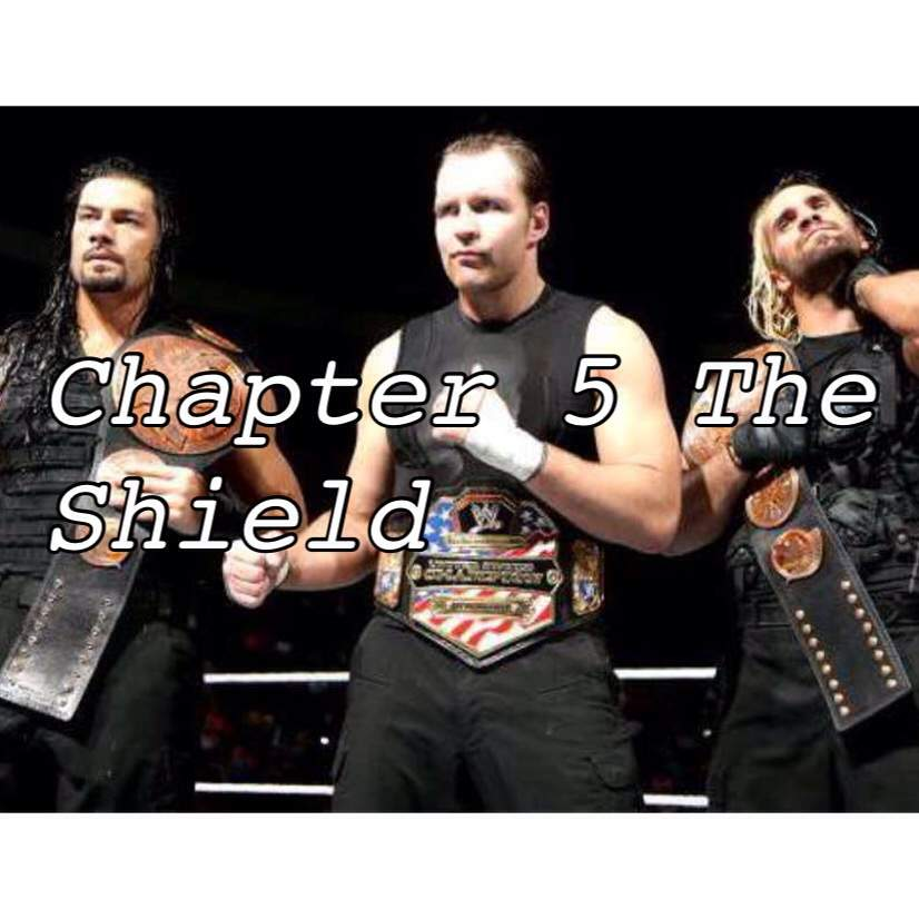 Chapter 4 At Rollins College: Seth Rollins Career So Far Chapter 5 The Shield