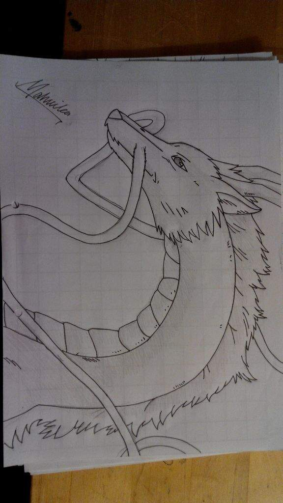 Spirited Away Haku Dragon Drawing Anime Amino