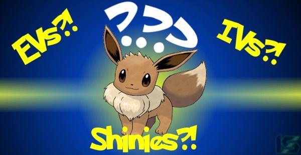 Pokemon Mond Ev Training