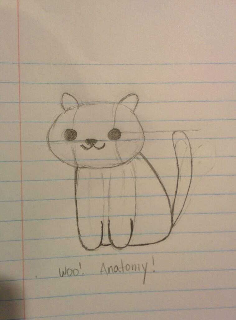 Neko Atsume Cat Anatomy | Cats Amino