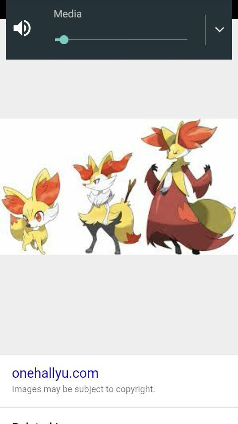 Fennekin Evolution Chart