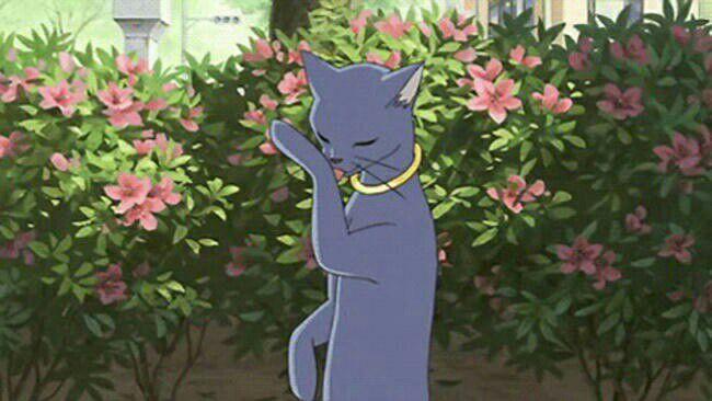 the cat returns full movie english dub 13
