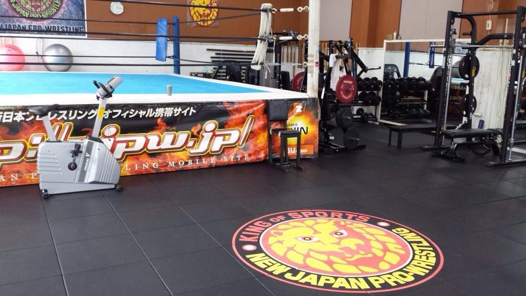Image result for new japan dojo