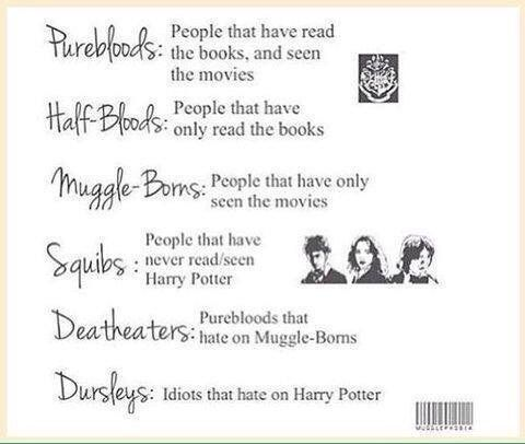 If Slytherin and Hufflepuff wre roommates | Harry Potter Amino