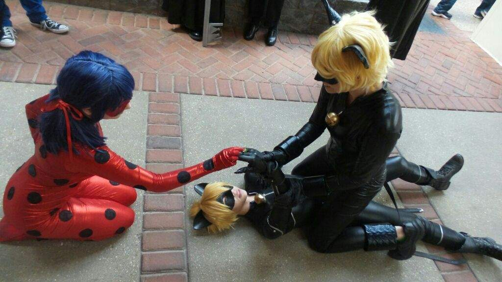 Image result for miraculous ladybug Hawk moth in real life
