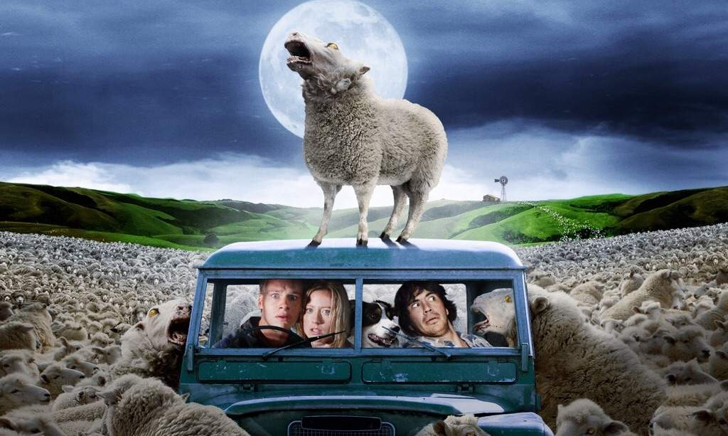 Download video the black sheep movie rviews videos