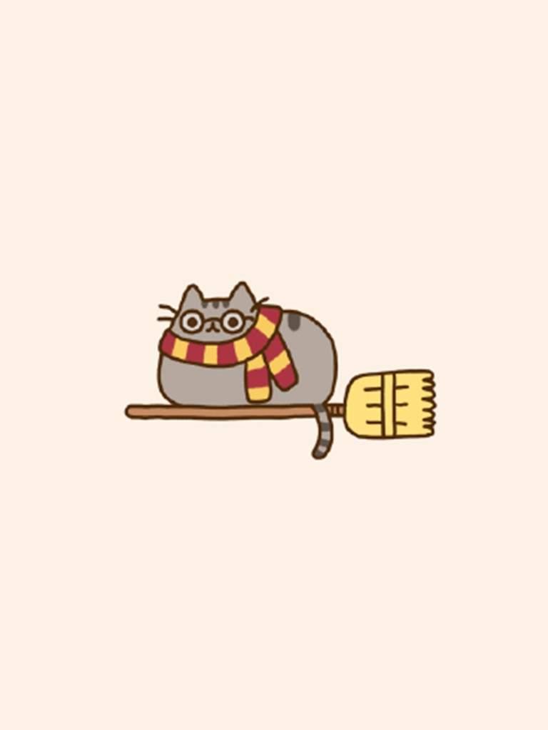 best cat litter reddit