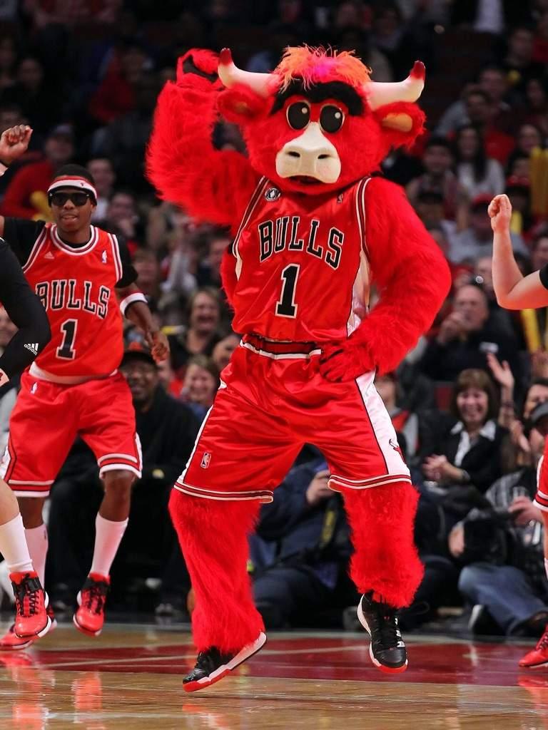 Chicago Bulls   Wiki   Hoops Amino