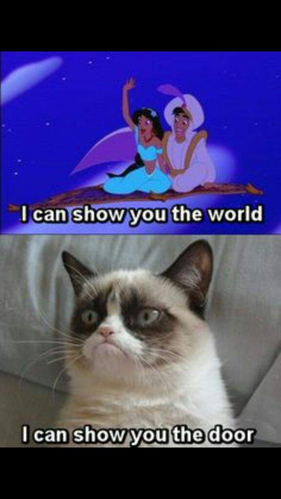 Top 10 funniest Grumpy cat memes! | Cats Amino