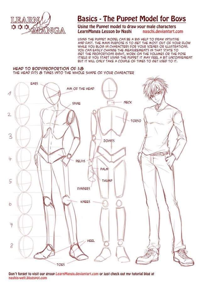 Male Anatomy Drawing Tutorial Wiki Art Amino