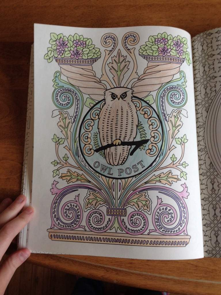 I Did The Owl Post Page This Was So Fun To Colour