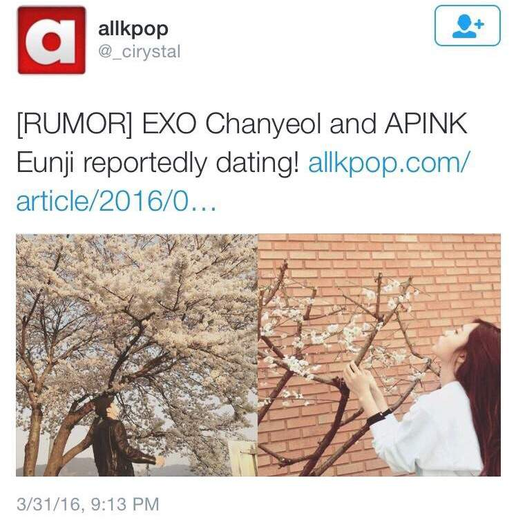 joy and chanyeol dating
