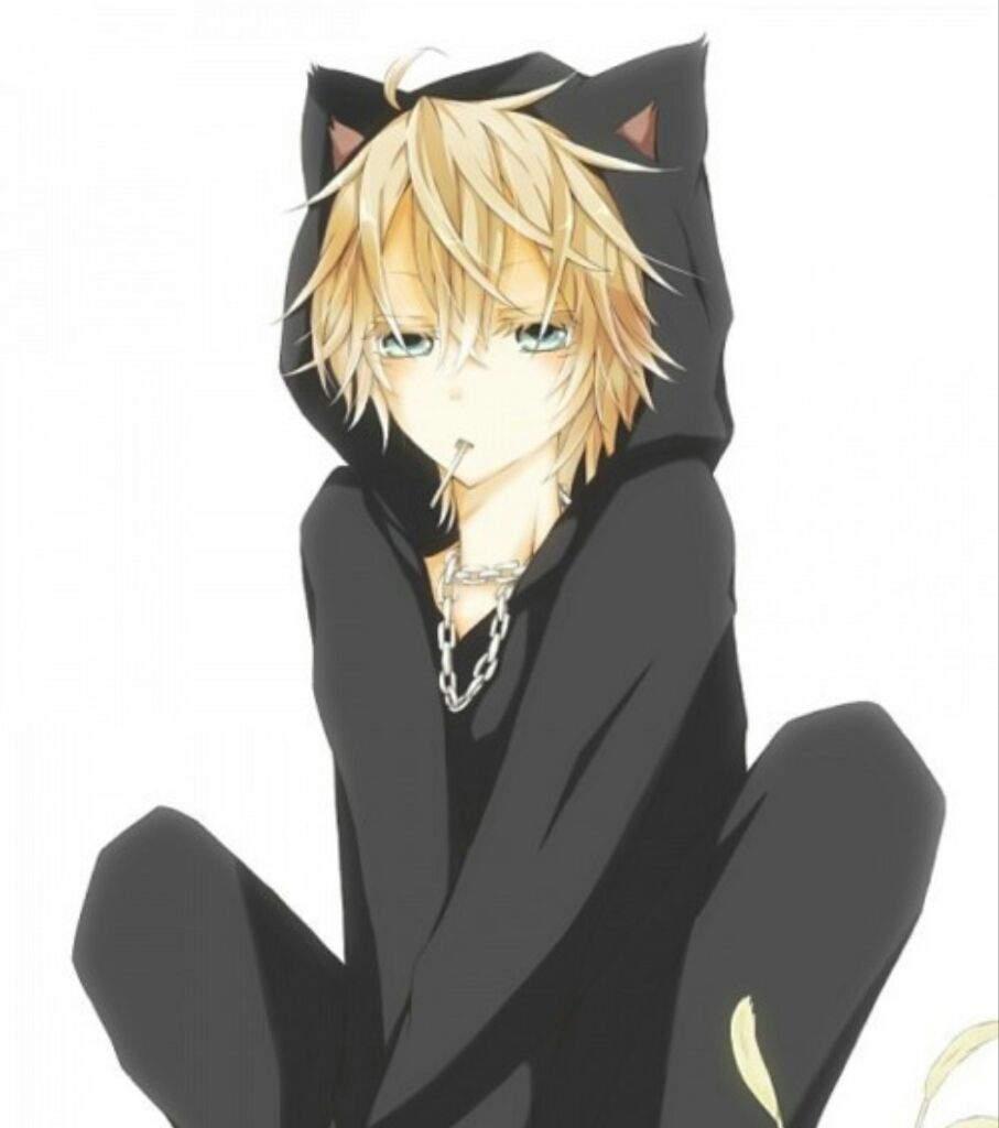 Мужчина кот аниме