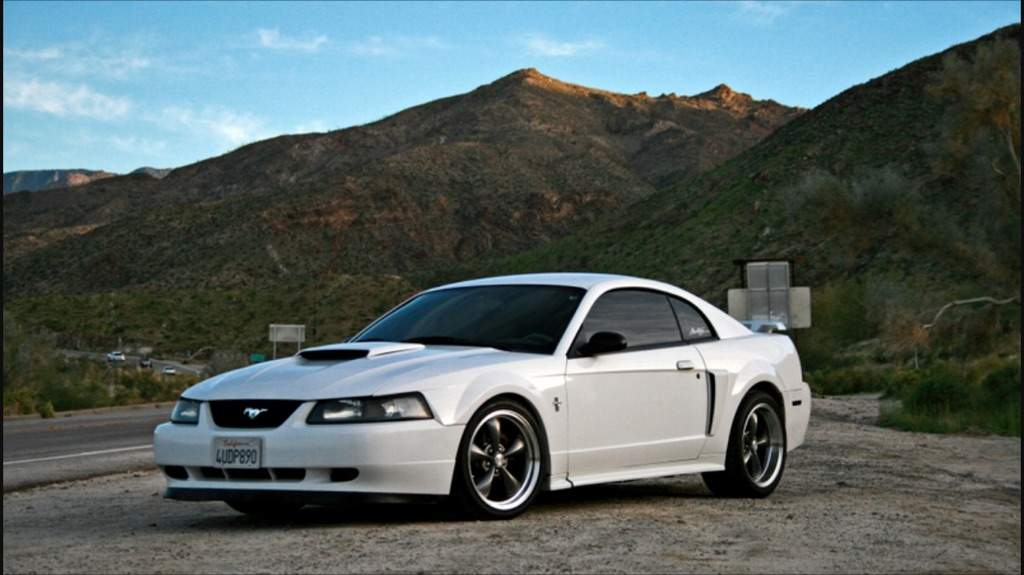 99-04 A 5 Garage 0 Vs Gte Edge Amino New Mustang 2jz In