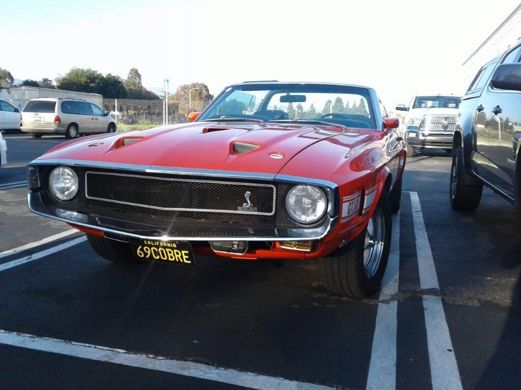 1969 Ford Mustang Shelby Gt350 Cobra Garage Amino