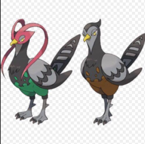 Top 5 Unova Pokemon That Should Mega Evolve Pokémon Amino