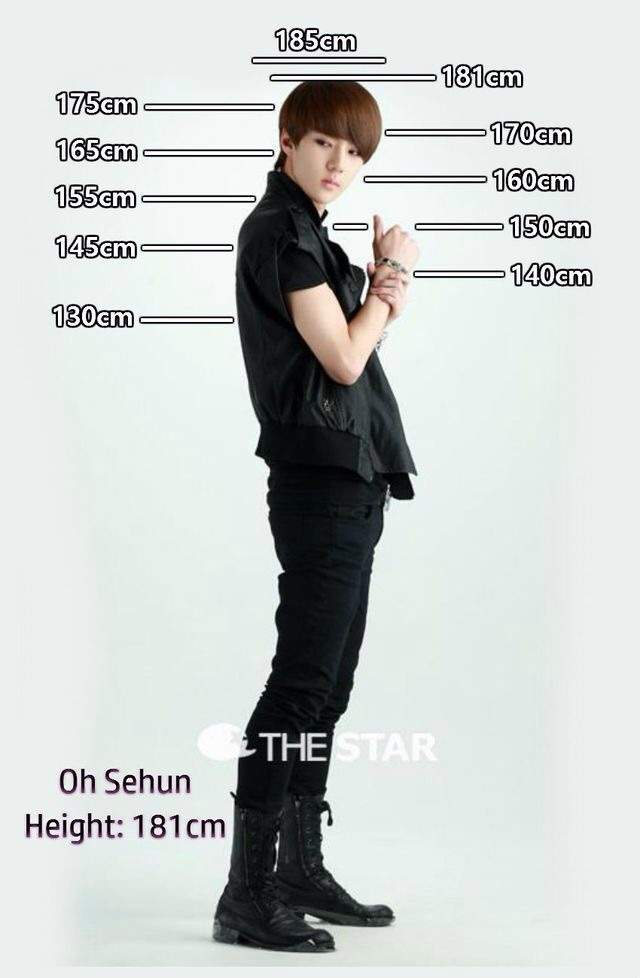 what is 185 cm in height