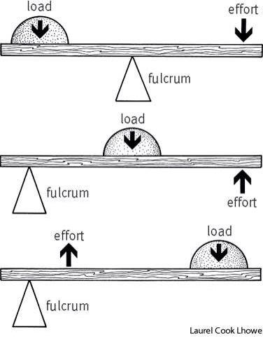 Ahsoka-Fulcrum Name Theory | Star Wars Amino