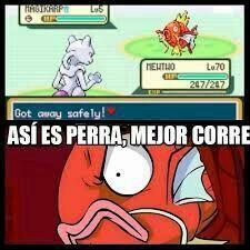 cec8858e331de07c2a9264a826a597f90df85c9b_hq memes pokemon \u2022pok�mon\u2022 en espa�ol amino,Memes De Pokemon