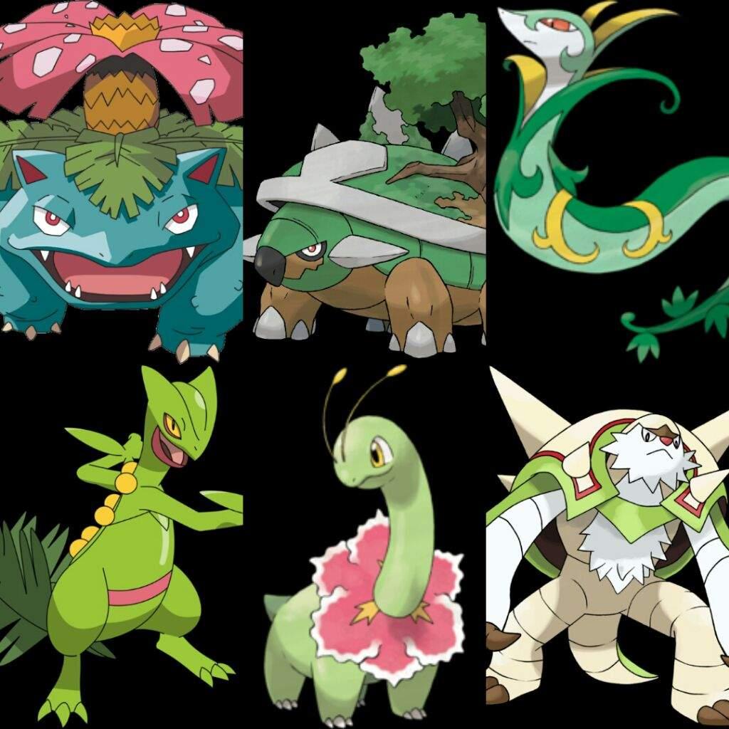 TIPO PLANTA | Wiki | •Pokémon• En Español Amino