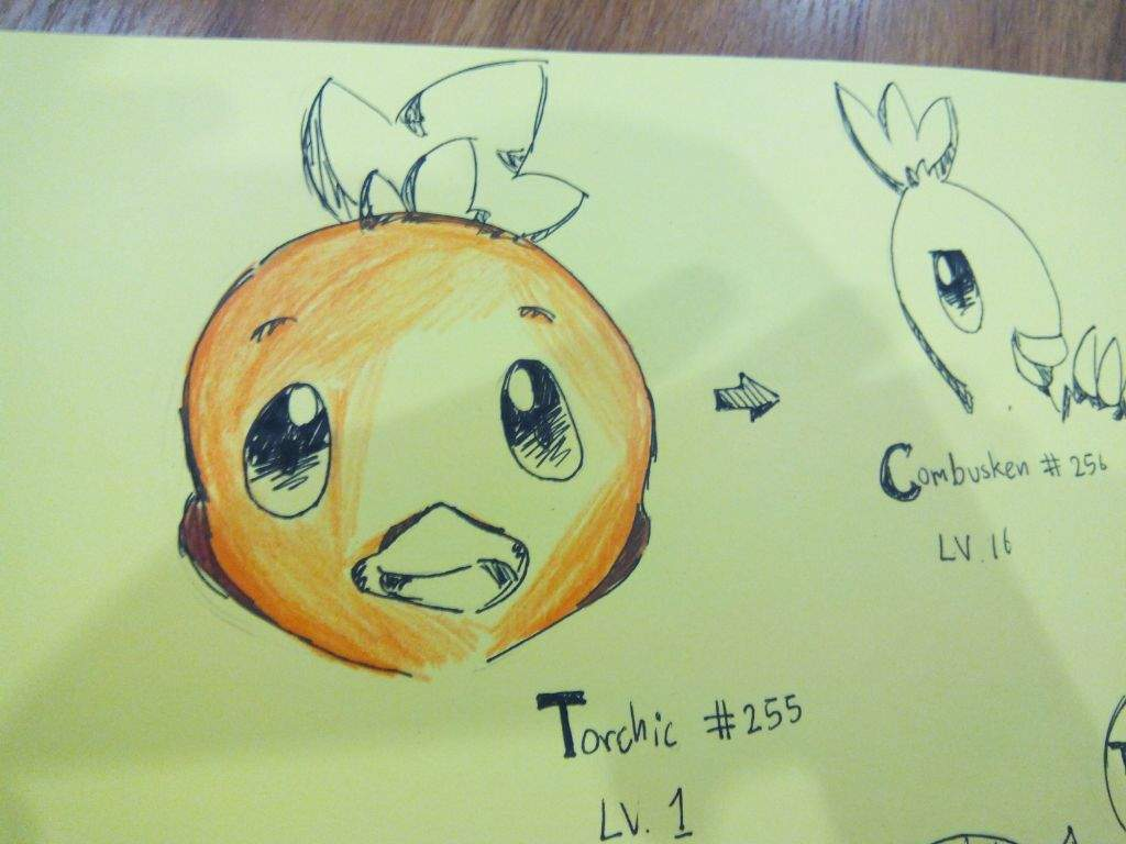 I Tought Should Color The Picture Then Start From Torchic But It Very Failed