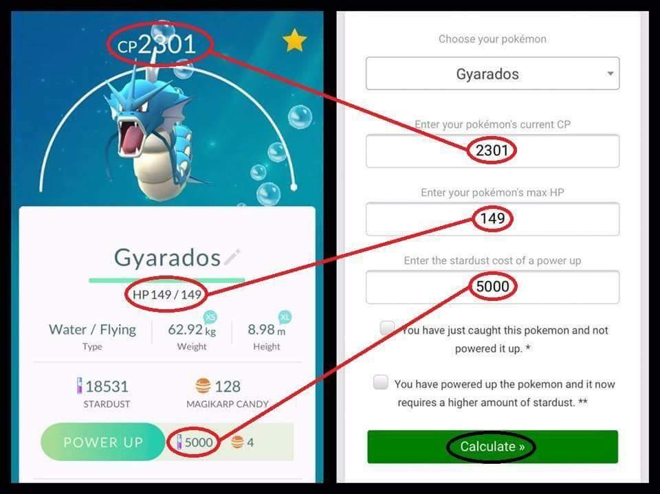 Perfect Pokemon Guide | Pokemon GO Amino