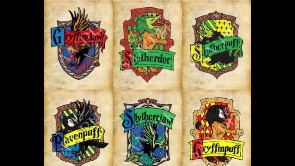 La Rivalidad V Harry Potter Español Amino