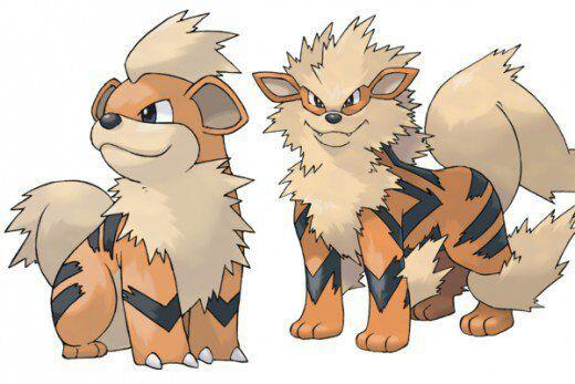 New Sun and Moon Alolan Forms Major leaks!!! | Pokémon Amino