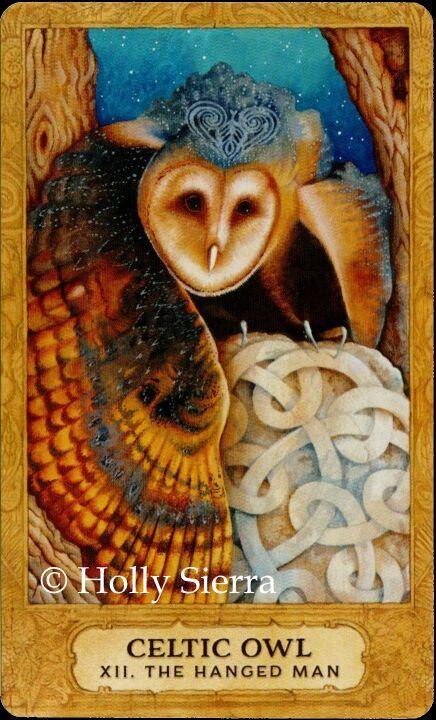 Rebirth Divination Card: Chrysalis Tarot Deck: Major Arcana