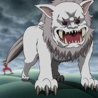 Sadaharu Wiki Gintama Amino