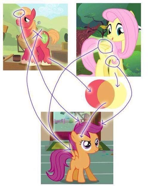 Scootaloo Is Fluttershy S And Big Mac S Daughter Theory Equestria Unofficial Fan Club Amino This was the hilarious result. equestria unofficial fan club amino