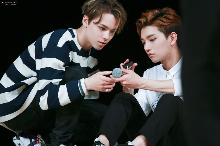 Joshua and Vernon of SEVENTEEN: Full Profile and 'IdolHits