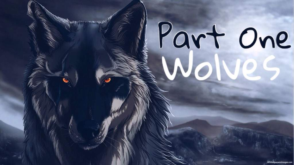 Anime Wolves and Foxes PartOneWolves   Anime Amino