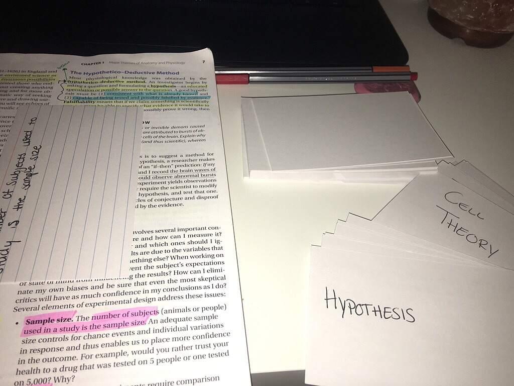 Vocabulary Memerization | StudyBlr Amino