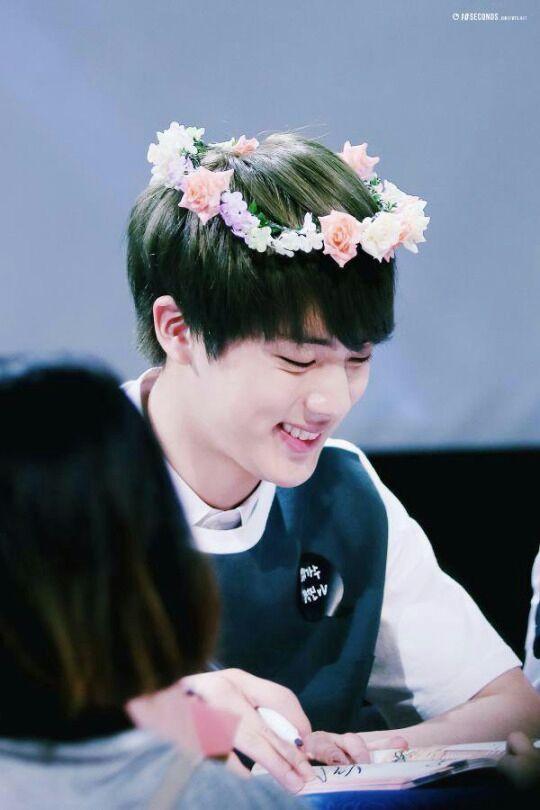 a flower boy s crown army s amino