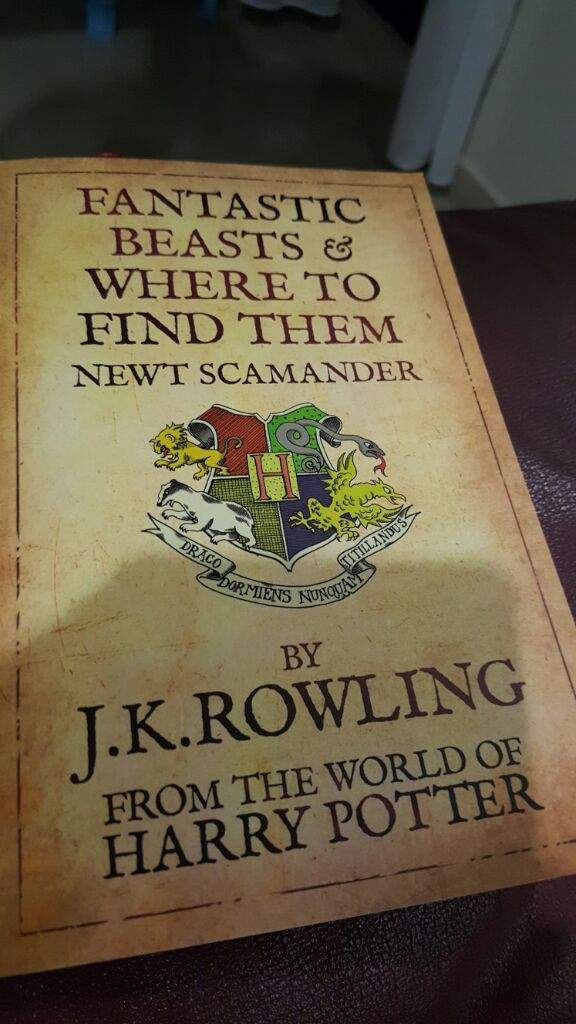 Draco Dormiens NunQuam Titillandus | Harry Potter Amino
