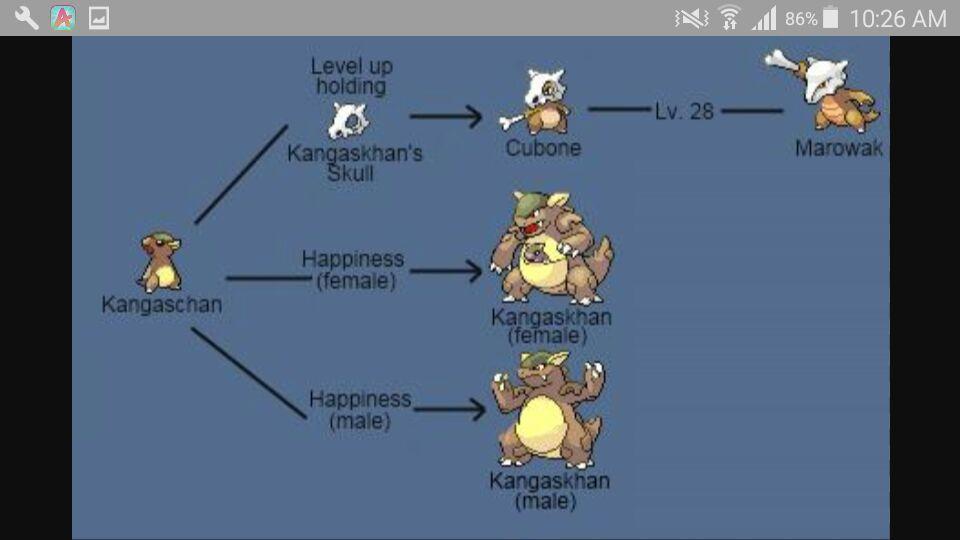 Cubone Es Un Kangaskhan Pokémon Go Amino