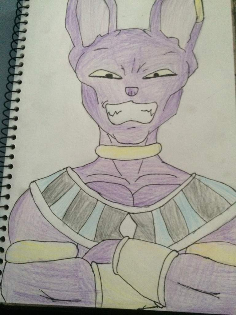 Lord Beerus Drawing Anime Amino