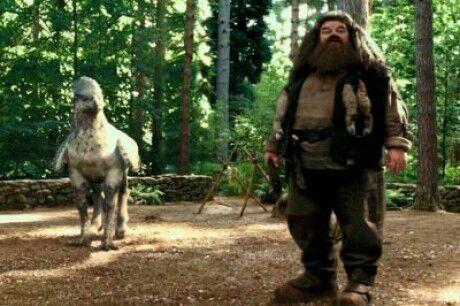 Buckbead y Hagrid