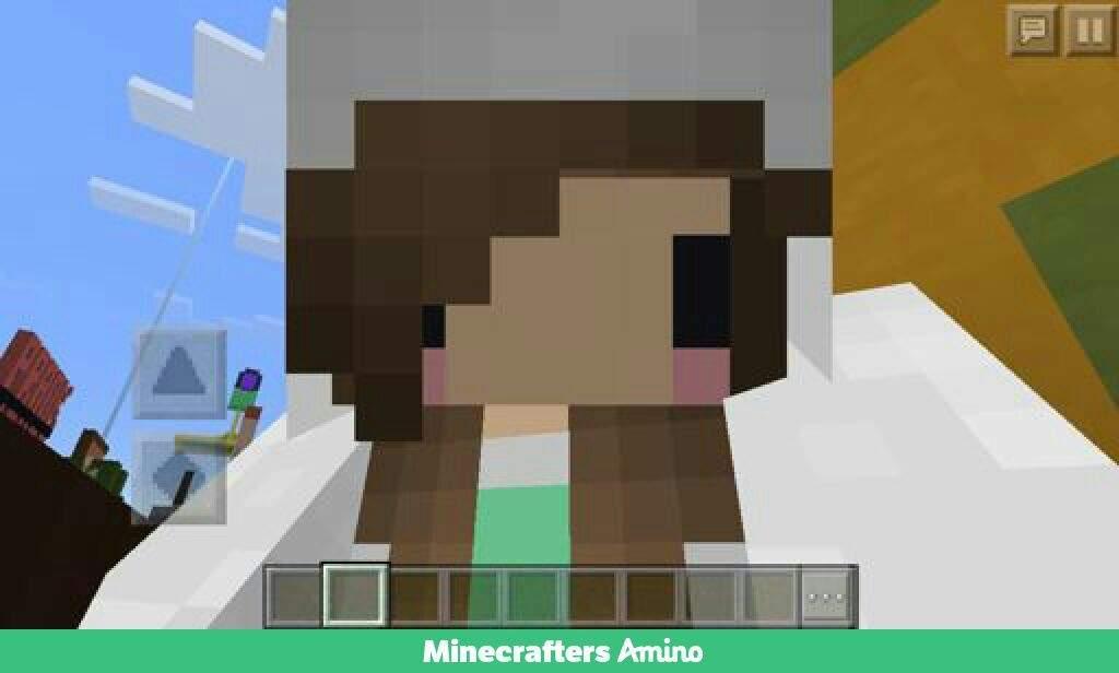 VOTE DERP UNICORN FOR PESIDENT | Minecraft Amino