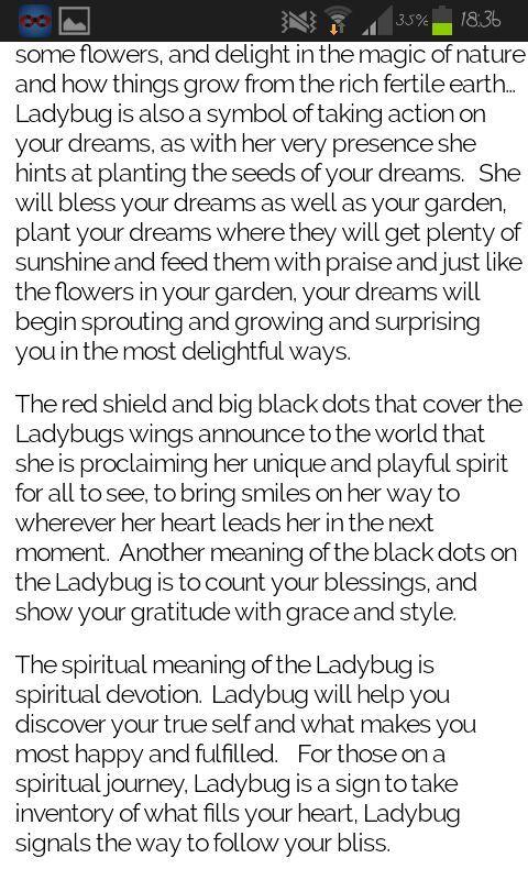 Ladybugs Meaning Miraculous Amino