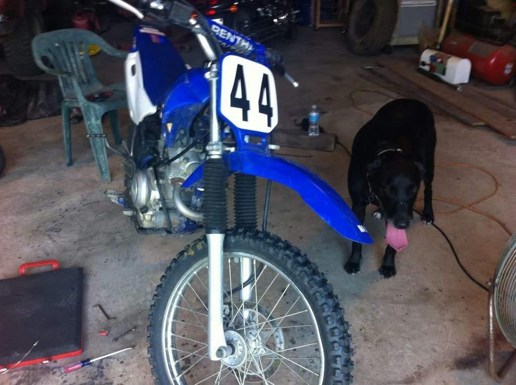 My Ttr 125 Motorcycle Amino Amino