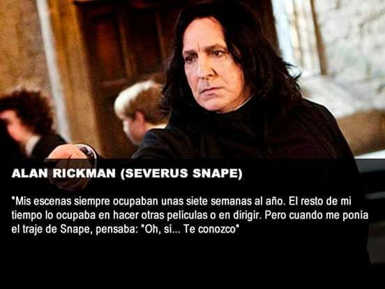 Algunas Pocas Frases De Los Actores Harry Potter