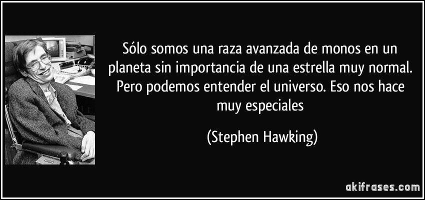 Frase De Stephen Hawking Ciencia Amino